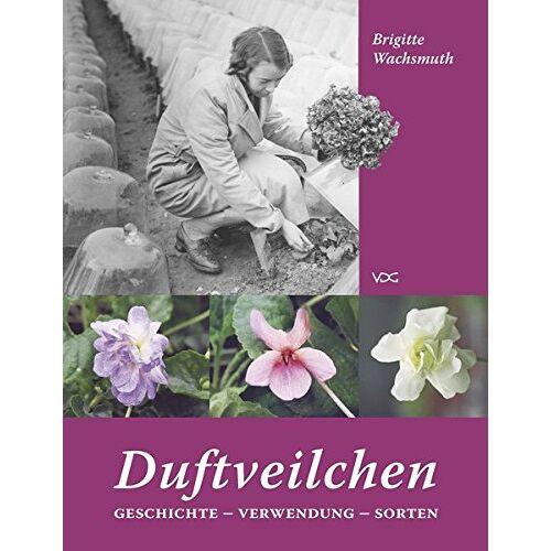 Brigitte Wachsmuth - Duftveilchen: Geschichte - Verwendung - Sorten - Preis vom 06.09.2020 04:54:28 h