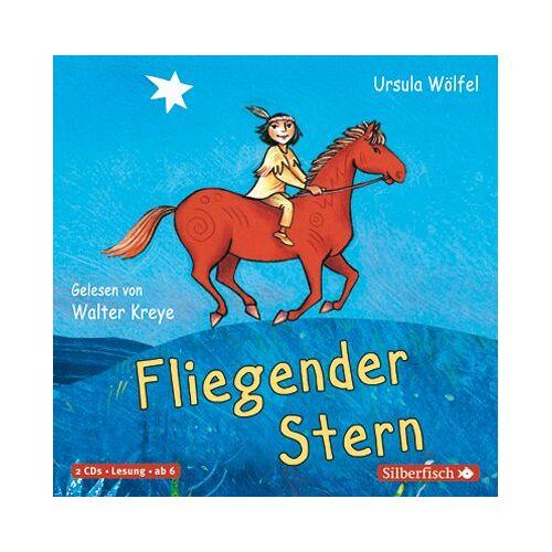 Ursula Wölfel - Fliegender Stern: 2 CDs - Preis vom 23.02.2021 06:05:19 h