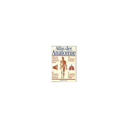 U. Benner - Atlas der Anatomie - Preis vom 13.09.2019 05:32:03 h