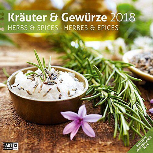 Ackermann Kunstverlag - Kräuter und Gewürze 30x30 2018 - Preis vom 05.08.2019 06:12:28 h