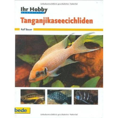 Ralf Bauer - Tanganjikaseecichliden, Ihr Hobby - Preis vom 06.09.2020 04:54:28 h