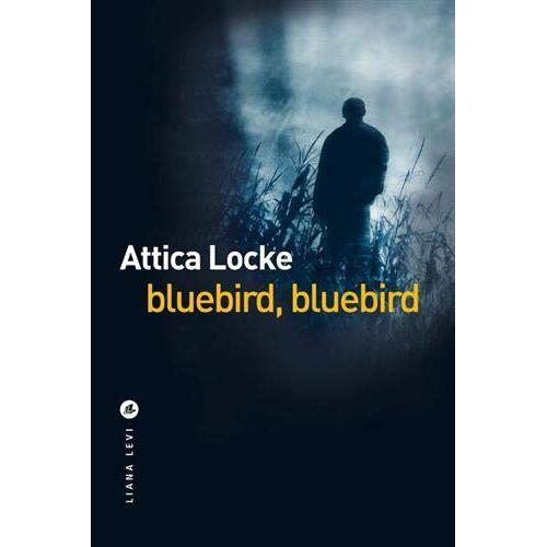- BLUEBIRD, BLUEBIRD - Preis vom 07.03.2021 06:00:26 h