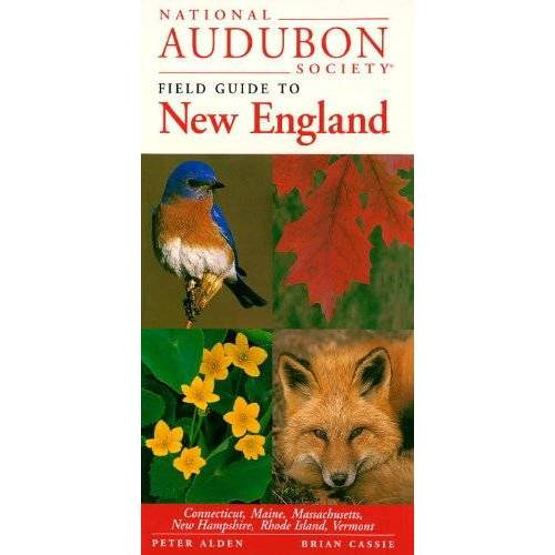 NATIONAL AUDUBON SOCIETY - National Audubon Society Regional Guide to New England (National Audubon Society Regional Field Guides) - Preis vom 18.04.2021 04:52:10 h