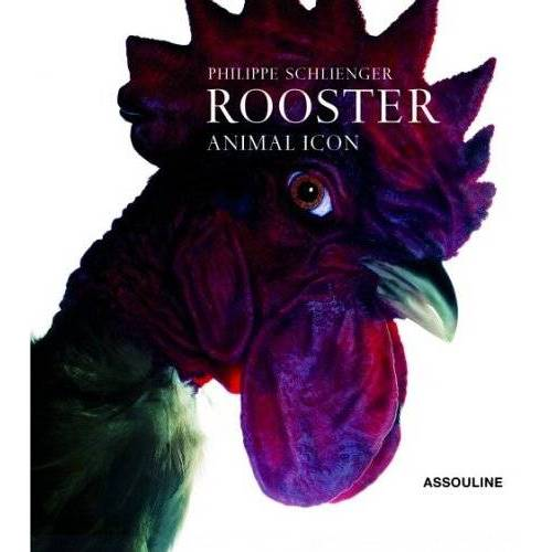 Philippe Schlienger - Roosters: Animal Icon - Preis vom 05.09.2020 04:49:05 h