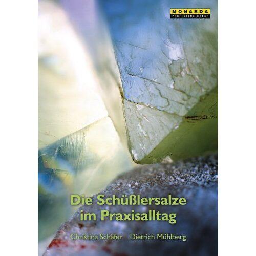 Christina Schäfer - Die Schüsslersalze im Praxisalltag - Preis vom 04.09.2020 04:54:27 h