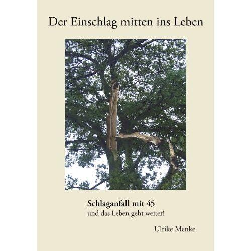 Ulrike Menke - Der Einschlag mitten ins Leben: Schlaganfall mit 45 und das Leben geht weiter! - Preis vom 15.05.2021 04:43:31 h