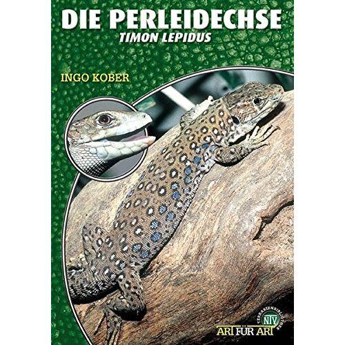 Ingo Kober - Die Perleidechse: Lacerta lepida (Art für Art / Terraristik) - Preis vom 20.10.2020 04:55:35 h