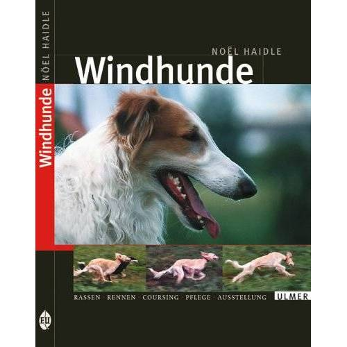 Noel Haidle - Windhunde - Preis vom 20.10.2020 04:55:35 h