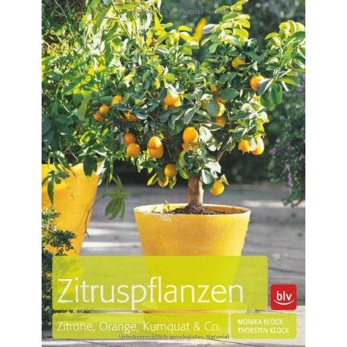 Monika Klock - Zitruspflanzen: Zitrone, Orange, Kumquat & Co. - Preis vom 23.02.2021 06:05:19 h