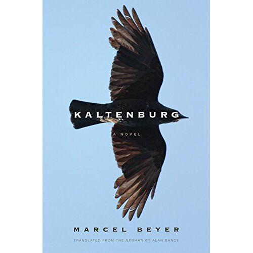 Marcel Beyer - Kaltenburg - Preis vom 01.03.2021 06:00:22 h