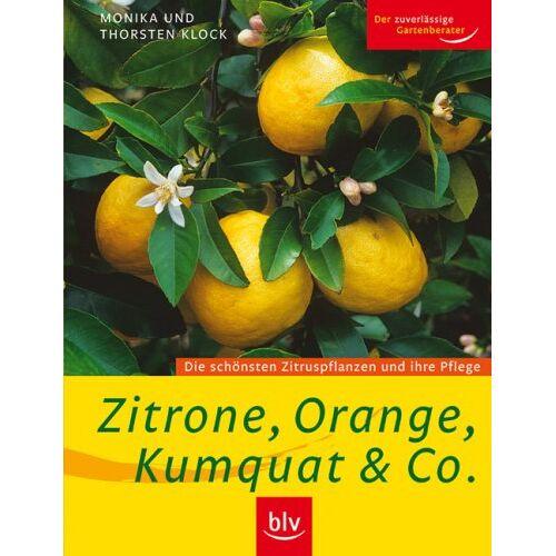 Monika Klock - Zitrone, Orange, Kumquat & Co: Die schönsten Zitruspflanzen und ihre Pflege - Preis vom 23.02.2021 06:05:19 h