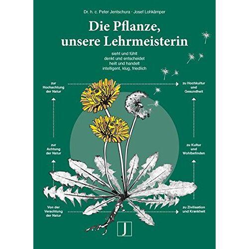 Jentschura, Dr.h.c. Peter - Die Pflanze, unsere Lehrmeisterin: sieht und fühlt, denkt und entscheidet, intelligent, klug, friedlich - Preis vom 20.10.2020 04:55:35 h