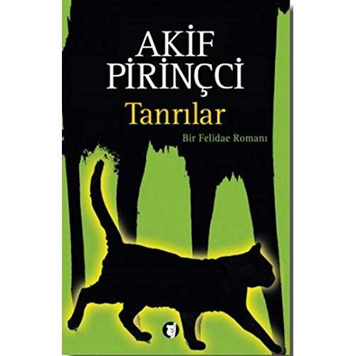 Akif Pirincci - Tanrilar - Preis vom 20.10.2020 04:55:35 h