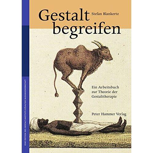 Stefan Blankertz - Gestalt begreifen: Ein Arbeitsbuch zur Theorie der Gestalttherapie - Preis vom 14.05.2021 04:51:20 h