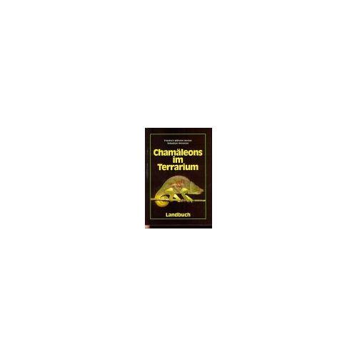 Friedrich-Wilhelm Henkel - Chamäleons im Terrarium - Preis vom 20.10.2020 04:55:35 h