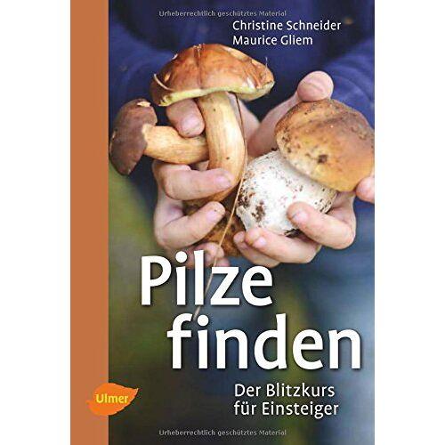 Christine Schneider - Pilze finden: Der Blitzkurs für Einsteiger - Preis vom 17.04.2021 04:51:59 h