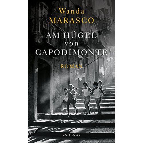 Wanda Marasco - Am Hügel von Capodimonte: Roman - Preis vom 20.10.2020 04:55:35 h