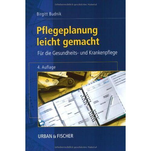 Birgitt Budnik - Pflegeplanung leicht gemacht - Preis vom 20.10.2020 04:55:35 h