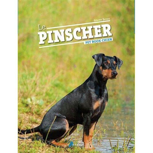 Alain Fournier - Le Pinscher - Preis vom 15.05.2021 04:43:31 h