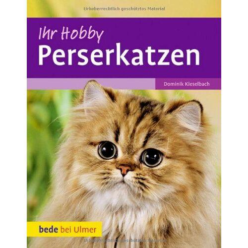 Dominik Kieselbach - Perserkatzen - Preis vom 18.04.2021 04:52:10 h
