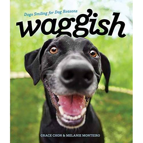 Grace Chon - Waggish: Dogs Smiling for Dog Reasons - Preis vom 05.09.2020 04:49:05 h