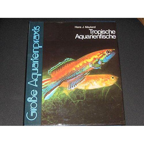 - Große Aquarienpraxis Bd 2,Tropische Aquarienfische - Preis vom 20.10.2020 04:55:35 h