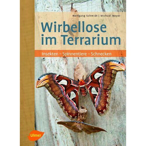 Wolfgang Schmidt - Wirbellose im Terrarium: Insekten - Spinnentiere - Schnecken - Preis vom 20.10.2020 04:55:35 h