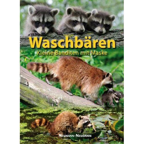 - Waschbären: Kleine Banditen mit Maske - Preis vom 18.04.2021 04:52:10 h