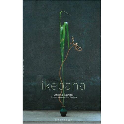 Angela Sawano - Ikebana - Preis vom 24.02.2021 06:00:20 h