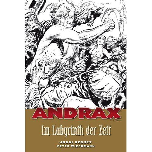 Peter Wiechmann - Andrax, Bd.2 : Im Labyrinth der Zeit - Preis vom 12.04.2021 04:50:28 h