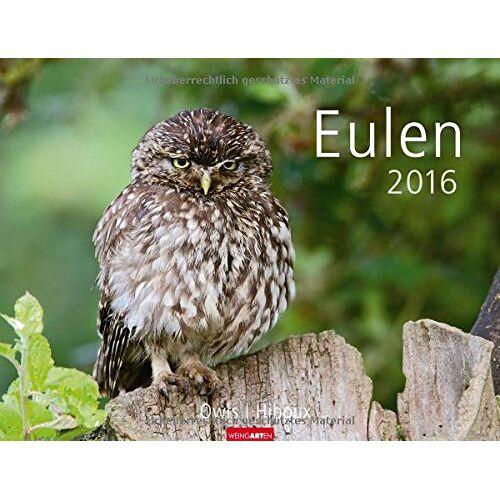 - Eulen 2016 - Preis vom 21.02.2020 06:03:45 h
