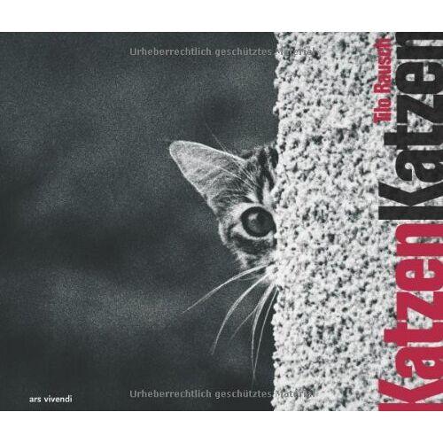 Tilo Rausch - Katzen Katzen - Preis vom 27.02.2021 06:04:24 h