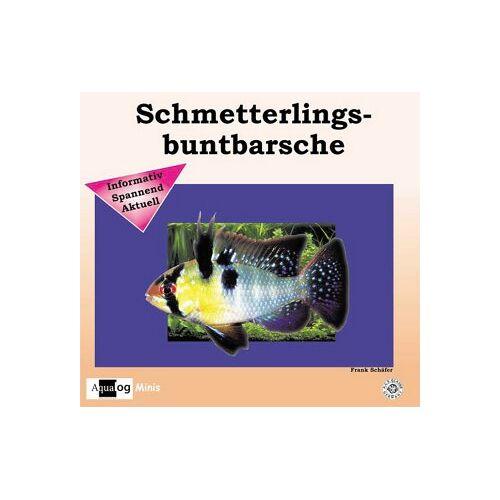 Frank Schäfer - Schmetterlingsbuntbarsche - Preis vom 28.02.2021 06:03:40 h
