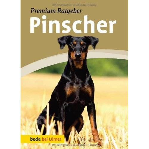 Annette Schmitt - Pinscher: Deutscher Pinscher und Zwergpinscher - Preis vom 15.04.2021 04:51:42 h