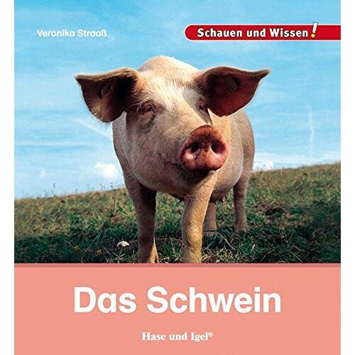 Veronika Straaß - Das Schwein: Schauen und Wissen! - Preis vom 11.04.2021 04:47:53 h