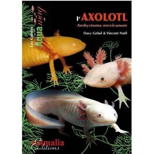 Davy Gebel - L'axolotl - Preis vom 28.02.2021 06:03:40 h