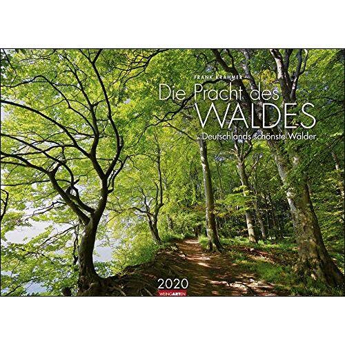Frank Krahmer - Die Pracht des Waldes 2020 68x49cm - Preis vom 01.03.2021 06:00:22 h