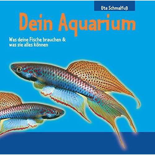 - Dein Aquarium: Was deine Fische brauchen & was sie alles können - Preis vom 28.02.2021 06:03:40 h