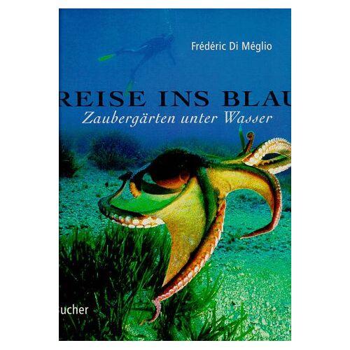 Frédéric Di Meglio - Reise ins Blau. Zaubergärten unter Wasser - Preis vom 26.03.2020 05:53:05 h