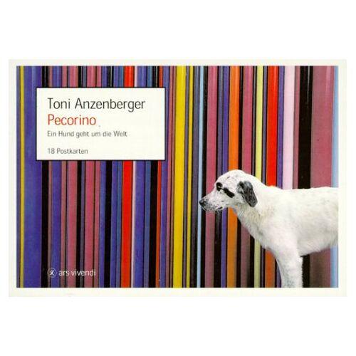 Toni Anzenberger - Pecorino. Postkartenbuch. Ein Hund geht um die Welt. 18 Farbpostkarten - Preis vom 28.03.2020 05:56:53 h