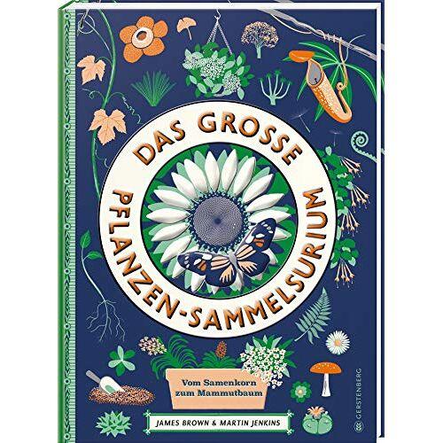 Martin Jenkins - Das große Pflanzen-Sammelsurium: Vom Samenkorn zum Mammutbaum - Preis vom 05.09.2020 04:49:05 h
