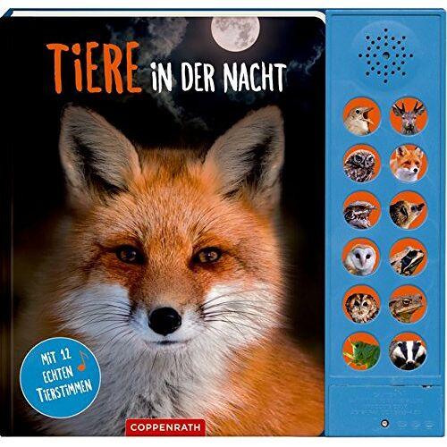 Katja Baier - Tiere in der Nacht: Mit 12 echten Tierstimmen - Preis vom 29.03.2020 04:52:35 h