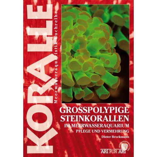 Dieter Brockmann - Großpolypige Steinkorallen: Im Meerwasseraquarium - Preis vom 20.10.2020 04:55:35 h