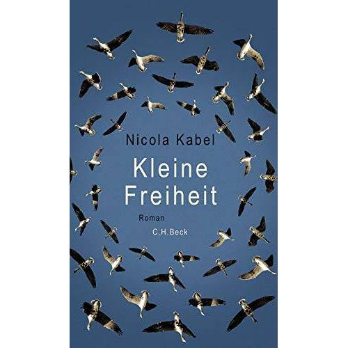 Nicola Kabel - Kleine Freiheit: Roman - Preis vom 07.05.2021 04:52:30 h
