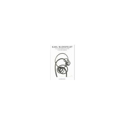 Karl Blossfeldt - Karl Blossfeldt. Licht an der Grenze des Sichtbaren - Preis vom 23.02.2021 06:05:19 h