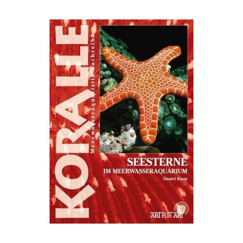 Daniel Knop - Seesterne im Meerwasseraquarium: Art für Art Meerwasser - Preis vom 20.10.2020 04:55:35 h