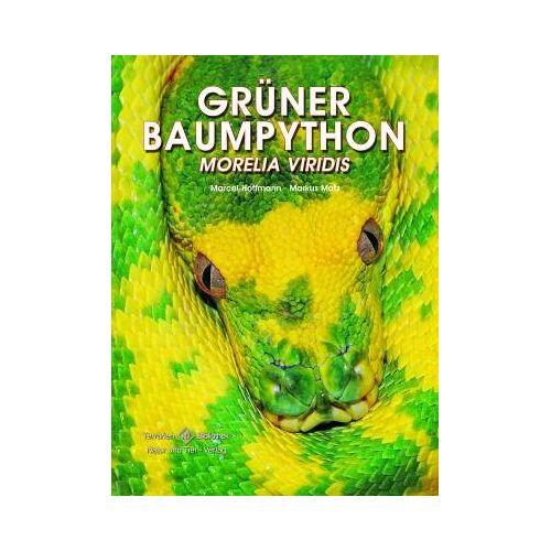 Marcel Hoffmann - Grüner Baumpython: Morelia viridis - Preis vom 04.05.2021 04:55:49 h