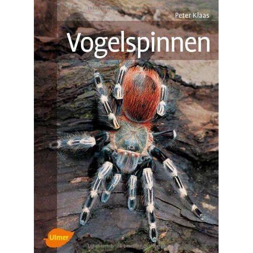 Peter Klaas - Vogelspinnen - Preis vom 20.10.2020 04:55:35 h