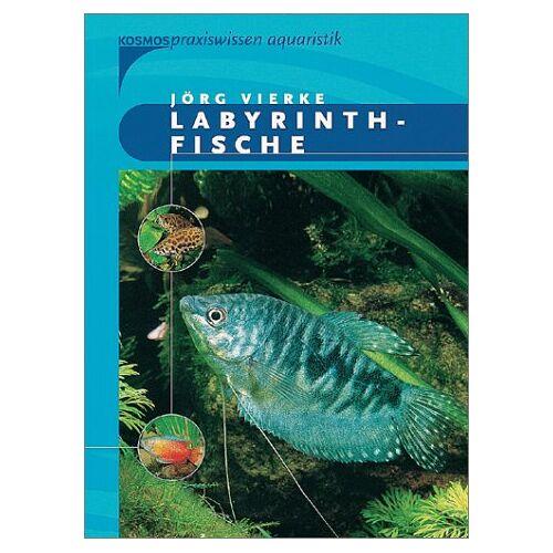 Jörg Vierke - Labyrinthfische - Preis vom 06.09.2020 04:54:28 h