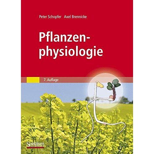 Peter Schopfer - Pflanzenphysiologie - Preis vom 27.02.2021 06:04:24 h
